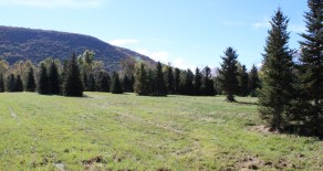 9 Acres Land in Orange Twp
