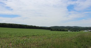 72+/- Acres: LAND-BLOOMSBURG AREA