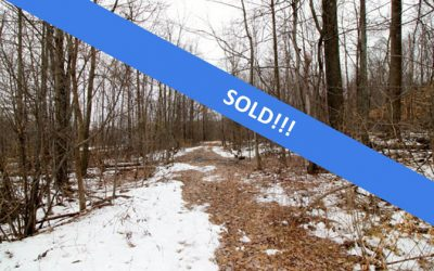 26+/- Acres of Wooded Land  Northumberland/Sunbury Area