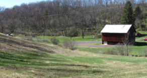 29 Acres, Pond, Bank Barn in Catawissa