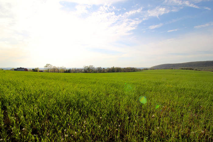 100 Acres Land in Bloomsburg