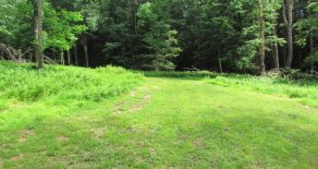 10+ Wooded Acres in Benton