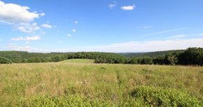 149+/- Acres Land in Benton