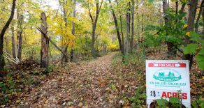 28 +/- Acres Land in Bloomsburg