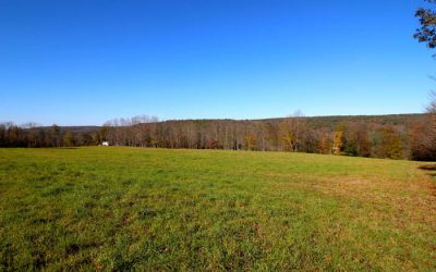243 +/- Acres Land for Sale