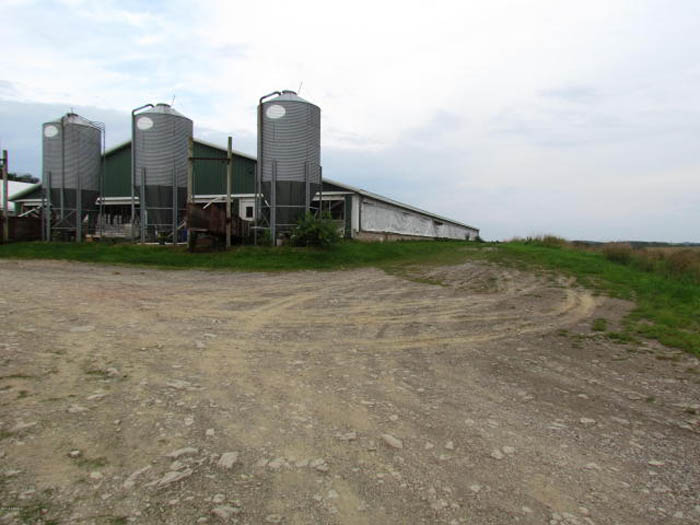 30 +/- Acres, Hog Farm