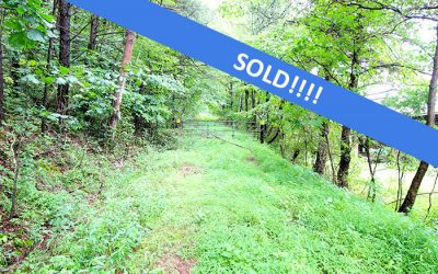 62 +/- Acre Wooded Parcel