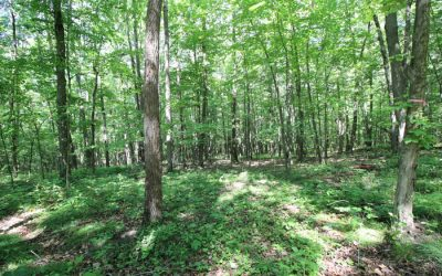 8 Building Lots Ranging from $55,000-90,000 in Lackawanna County