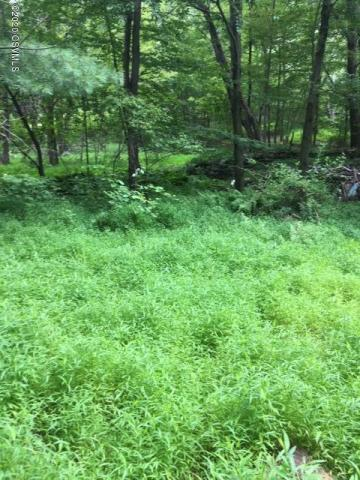 59 +/- Acres Wooded Land